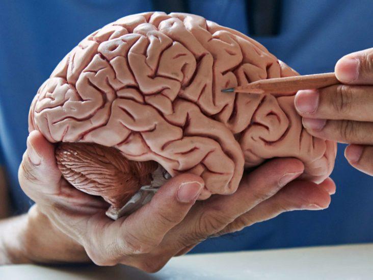 Berita Kesehatan 2021: Temuan Dua Neurotransmiter Prediktif